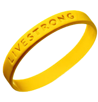 Travelogue for Livestrong